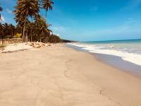 9350 sq. mtrs beachfront property- 2.30 acres $43.M2
